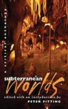 Subterranean Worlds: A Critical Anthology