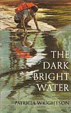 The Dark Bright Water