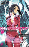 Accel World 14: Archangel of Savage Light