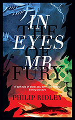 In the Eyes of Mr. Fury